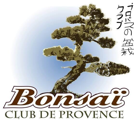 logo bcp